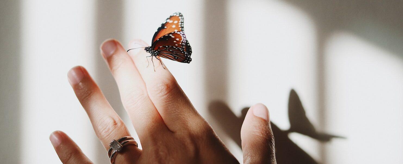 Как убрать негатив и реализовать свои желания?